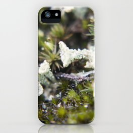 Cup moss iPhone Case