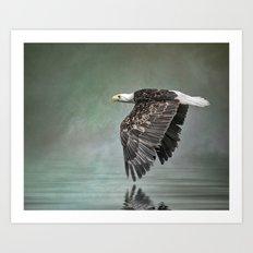 Bald eagle in Mist Art Print