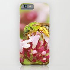 Pollen iPhone 6s Slim Case