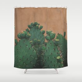 Route 66 Prickly Pears Shower Curtain