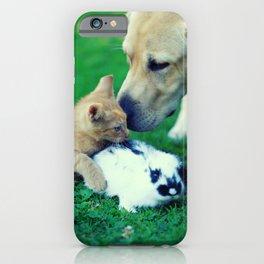Rabbit Dog Cat iPhone Case