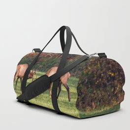 Elk Sparring Great Smoky Mountains Duffle Bag