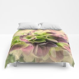 Soft Hydrangea Flower Modern Country Farmhouse Art A422 Comforters