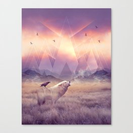 In Search of Solace Canvas Print