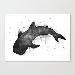 Whale shark, black and white Canvas Print
