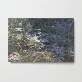 Frosty Underfoot Metal Print