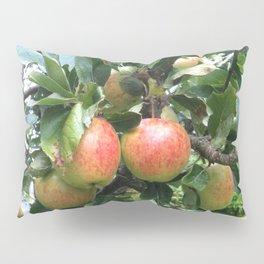Juan's tree Pillow Sham