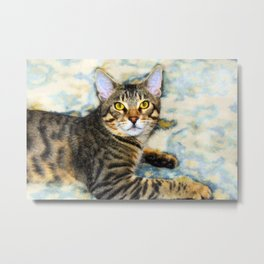 Bengal Tom Metal Print