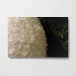 Decoration Metal Print