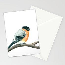 Bullfinch bird Stationery Cards