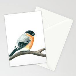 Bullfinch bird Stationery Cards