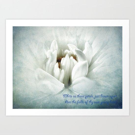 Snow -White Flower Art Print