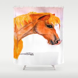 Jacko RDA Pony Shower Curtain