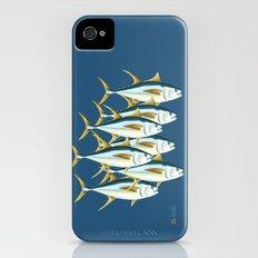 School of Tuna, fish iPhone (4, 4s) Slim Case