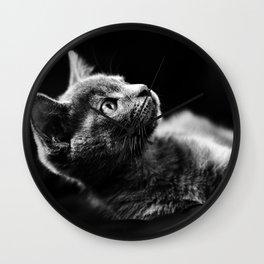 kitten looking up Wall Clock