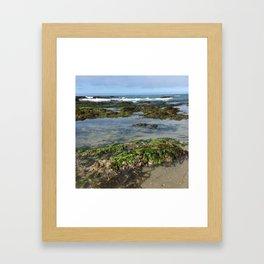 Carpinteria Tidepools Framed Art Print