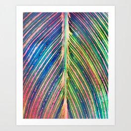 503 - Canna Leaf Abstract Art Print