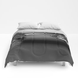 Then There is Cold... in Black and White Comforters