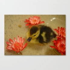 Ducky in the Flowers Canvas Print