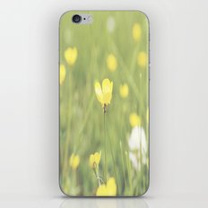 Yellow Flowers in a Field  iPhone & iPod Skin