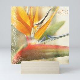 Bird of Paradise - Strelitzea reginae - Tropical Flowers of Hawaii Mini Art Print