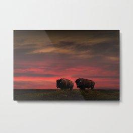 Two American Buffalo Bison at Sunset Metal Print