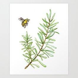 Rosemary and Honey Bee Art Print