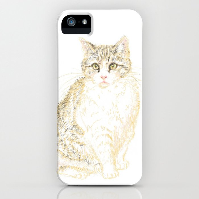 Plump Shorthair Tabby Cat iPhone Case