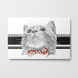 Starwars kitty Metal Print