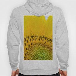 sunflower detail Hoody