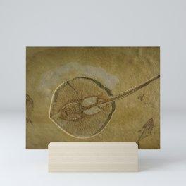 Flat Fish Fossil Mini Art Print