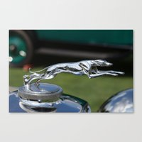 greyhound Canvas Prints featuring Greyhound by the_continuum