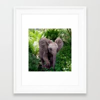 baby elephant Framed Art Prints featuring Baby Elephant by Erika Kaisersot