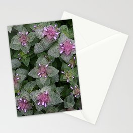 WILD SALVIA MAUVE AND GRAY GREEN Stationery Cards