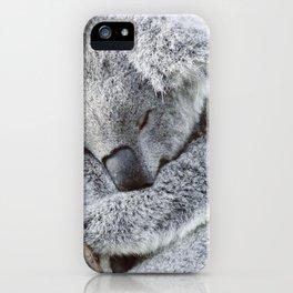 Sleeping Koala iPhone Case