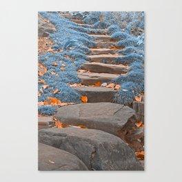 Sapphire Stepping Stones Canvas Print