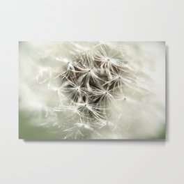 Into the Weed Metal Print