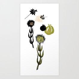 Plants, autumn  Art Print
