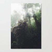 peru Canvas Prints featuring peru by joram nathanael