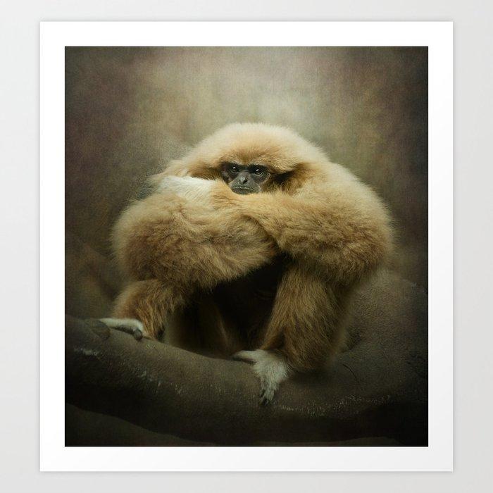 Study of a Gibbon - The Thinker Art Print