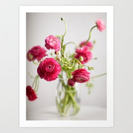 Ranunculus, color Art Print
