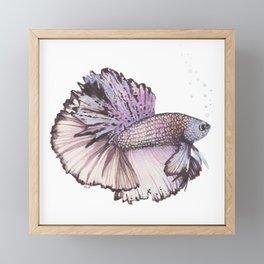 Pastel Betta Fish Framed Mini Art Print