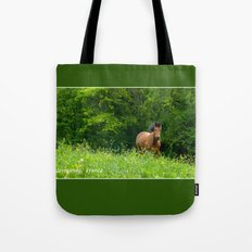 Horse in a pature Tote Bag
