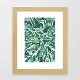 calathea leaves Framed Art Print