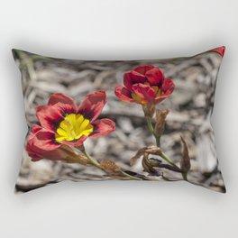 Little Sparaxis Rectangular Pillow