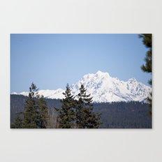 Eastern Washington Snow Obstacles  Canvas Print