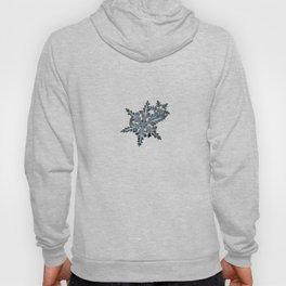 Real snowflake photo - Stars in my pocket like grains of sand Hoody