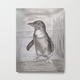 fairy penguin Metal Print