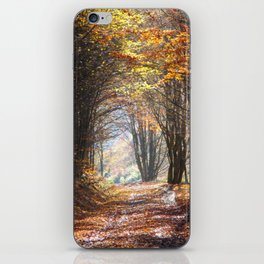 Dazzling Autumn iPhone Skin