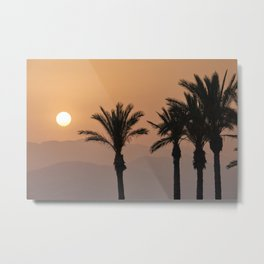 Sun through the mountains and palms at the beach. Metal Print